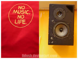 no MUSIC no LIFE by lidush