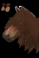 WHIP - horse head portrait by Skye-Studios