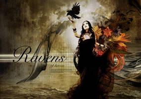 ravens by rottendog