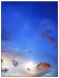 Mon Ciel by AlviNem