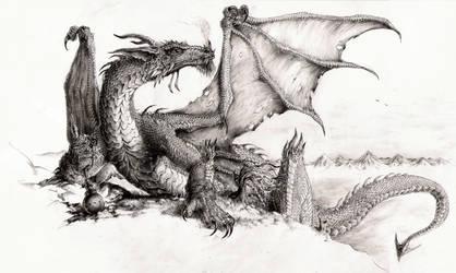 Silvia's Dragon by megamoth