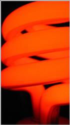 Neon Lightz 3 by preciouszipster