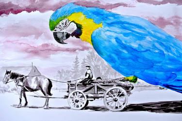 Polly wants a ride by rskrakau