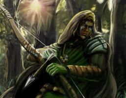 Wild Elf by gpetersz