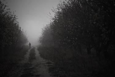 mist by Vurtov