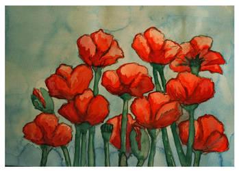Poppies by svenskalovenska