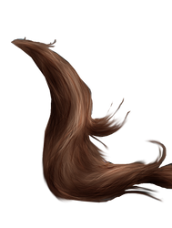 Horse Tail png 2 by peachesrox-stock