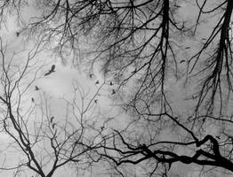Desolate by Kemendil