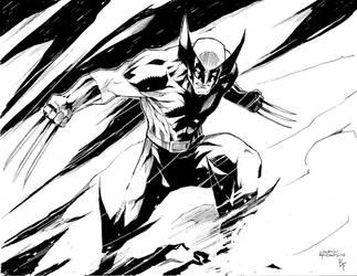 Wolverine by BrandonFranklin