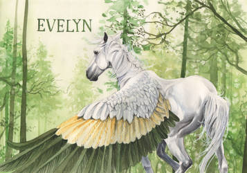 Evelyn by In-The-Distance