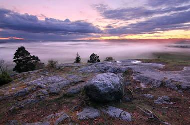 Fogmosphere by Richiedude