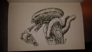 Alien by sterna