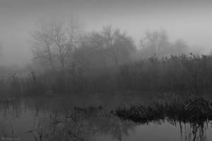 Dark Swamp by LillianEvill