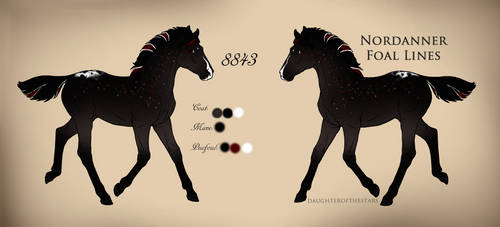 8843 Foal Design by SoM--Stables