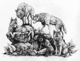 Wolf pack by Anniez19