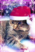 Yumi Noel by x-Tsila-x