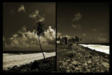 Loner by IslandJoe