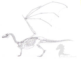 Pern Dragon Skeleton by bronze-dragonrider