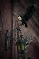 Lumieres by DelusionalAsylum