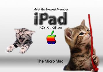 PHOTOSHOP: iPad- OSX Kitten by AlienatedIllusions
