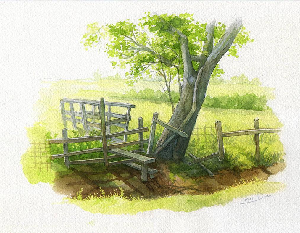 Tree - watercolor by lisiCat