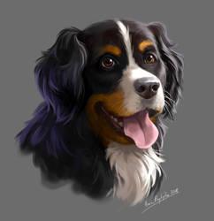 Dog by lisiCat