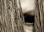 Scarecrow by mudakisa