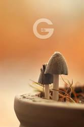 G-rib by mudakisa
