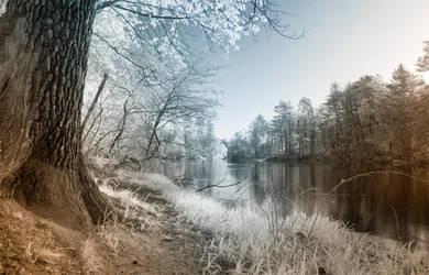 Cold Summer by mudakisa