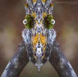 Dendroidal Weevil by mudakisa