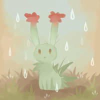 Cactus by Cocoroll