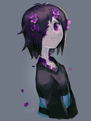 Lavender by Cocoroll