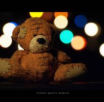 Teddy meets bokeh by piximi