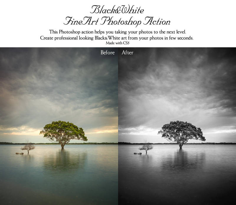 Black and White FineArt Photoshop Action by piximi