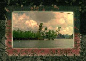 Memory of Mangroves by linandara