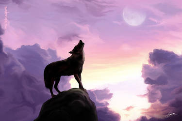 Ulven by Sabrine