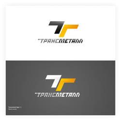 Transmetal Logotype by ahillesus
