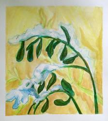 Aesop 6: Olive Tree in Snow II by allthingswillbe