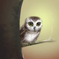 Sketch A Bird by gandarewa