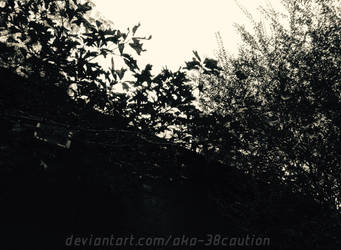 Blacken Leave by AKA-38CAUTION
