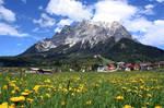 Alpsummer 3 by igryk