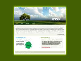 BSSR Website Concept by infinitestudios