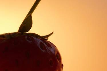 Berrylicious by snowangel591