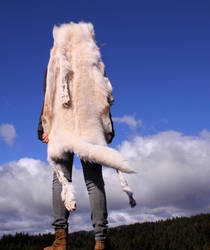 White Wolf Skin Headdress II by NaturePunk