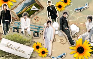 Shinhwa Wallpaper by SariiSeiichirouHaydn