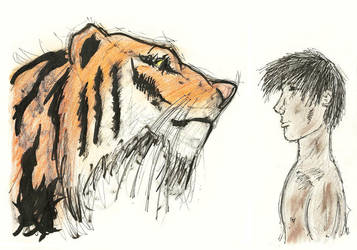 Pi and the Tiger by meylersmemoirs