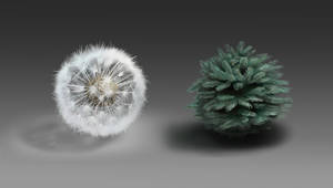 Material Studies - Dandelion and Spruce by sweptaway91