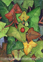 ACEO Ivy and Ladybird by JoannaBromley
