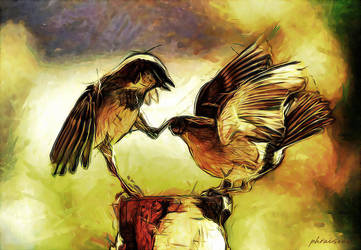 Birds by phraisohn