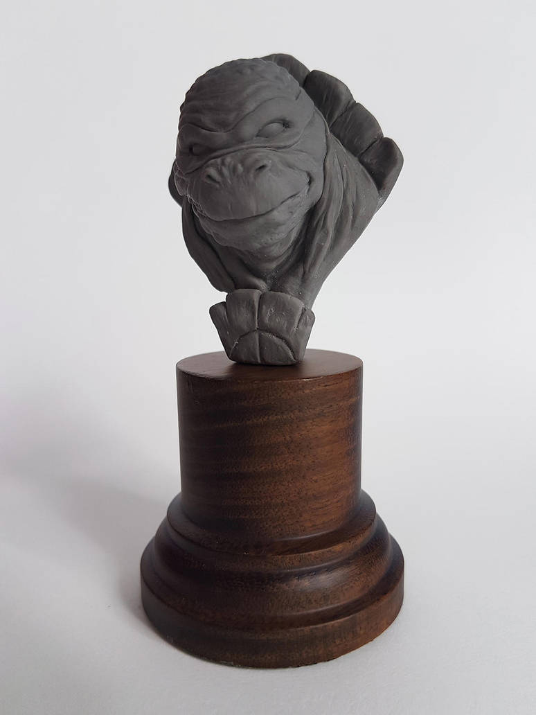 Tortuga Ninja by felixdasilva